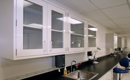 Eclipse Laboratory Wall Cabinets